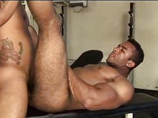 Huge Muscled Hairy Guy Wanted To Succeed in Fucked