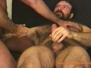 These soft gay bears are cumming
