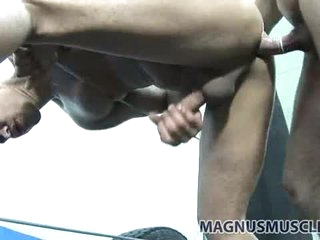 Equip guys doggy style sex in the boxing gym
